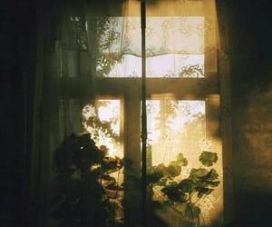 window, sun, and vintage image