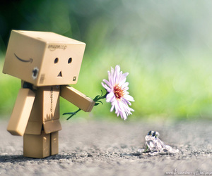 flowers, frog, and danbo image