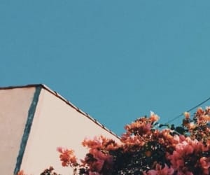 wallpaper, flowers, and aesthetic image