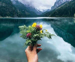 explore, flowers, and lakes image