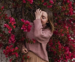 aesthetic, bloom, and carnation image