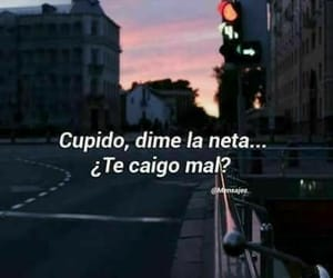 :(, cupido, and funny image