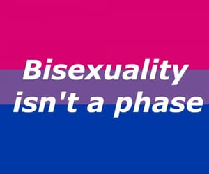 aesthetic, pride, and bissexual image
