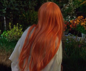 garden, longhair, and redhair image