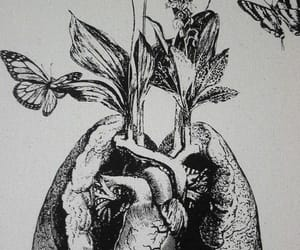 art, flowers, and grey image