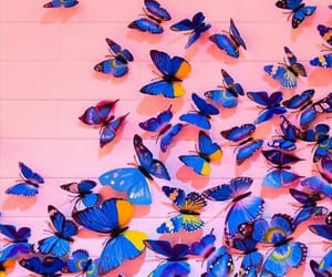 blue, butterflies, and pink image