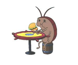eating, krabby patty, and gif image