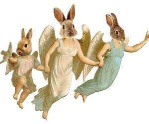 angels, bunny, and gif image