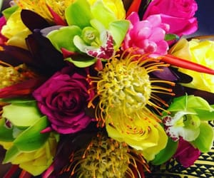 floral, exotic, and flowers image