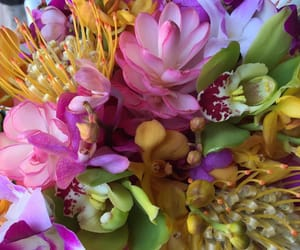 exotic, floral, and flowers image