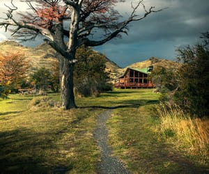landscape, path, and patagonia image