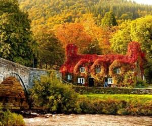 bridge, cottage, and england image