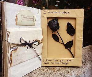 book, rose, and black image