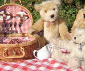 picnic, teddy, and cottagecore image