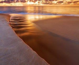 beach and nature image