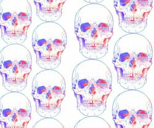 background, calaveras, and skulls image