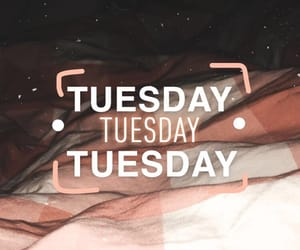 night, story, and tuesday image