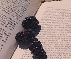 book, aesthetic, and fruit image