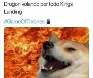 divertido, memes, and kings landing image
