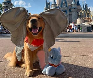 dog, puppy, and disney image