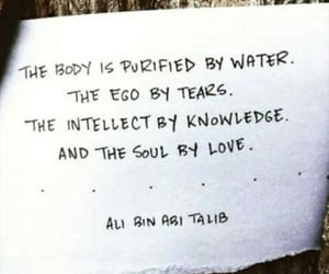 body, ego, and knowledge image