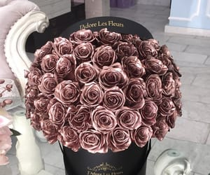 rose and rose gold image