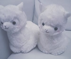 cute, white, and alpaca image