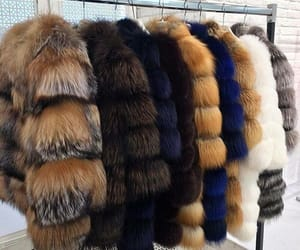 fur, fashion, and style image