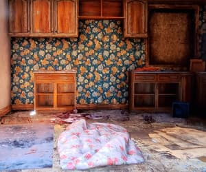 abandoned, floral, and kitchen image