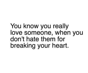 quotes, hate, and heartbroken image