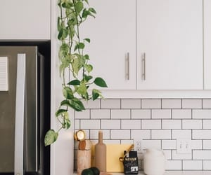 design, kitchen, and interior image