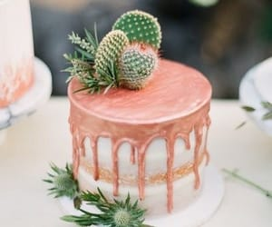 cactus and cake image