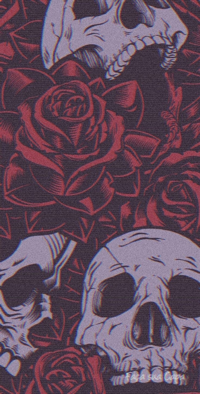 Wallpaper Skulls Roses Discovered By Onon
