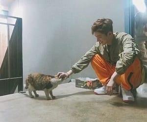 Ikon, kim hanbin, and a cat image