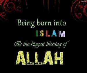 islam, text, and quote image