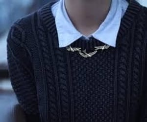 birds, collar, and hogwarts image