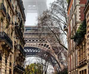 paris, street, and travel image