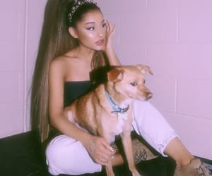 aesthetic, vibes, and ari image