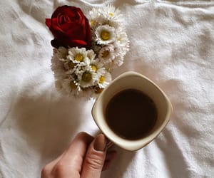 coffee, red rose, and rose image