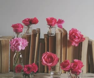 book, books, and rose image