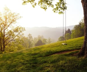 mountain, nature, and swing image