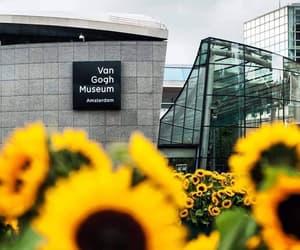 art, museum, and sunflower image