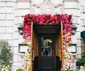 architecture, city, and flowers image