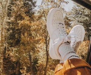 shoes, autumn, and photography image