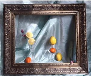 aesthetics, art, and fruit image