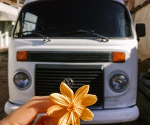 bloom, blossom, and car image