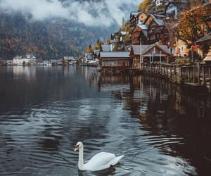 austria, beautiful, and photography image