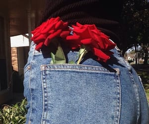 rose, jeans, and flowers image