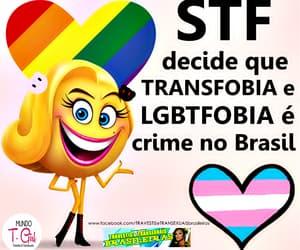 homofobia, transfobia, and criminalizastf image