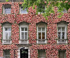 architecture, city, and floral image